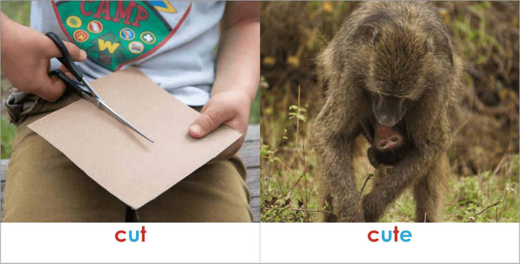 Montessori Book for Kids