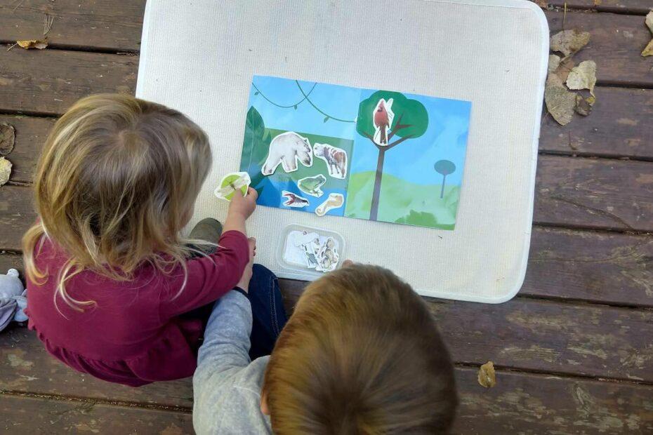 Montessori DIY Land, Air, Water Lesson