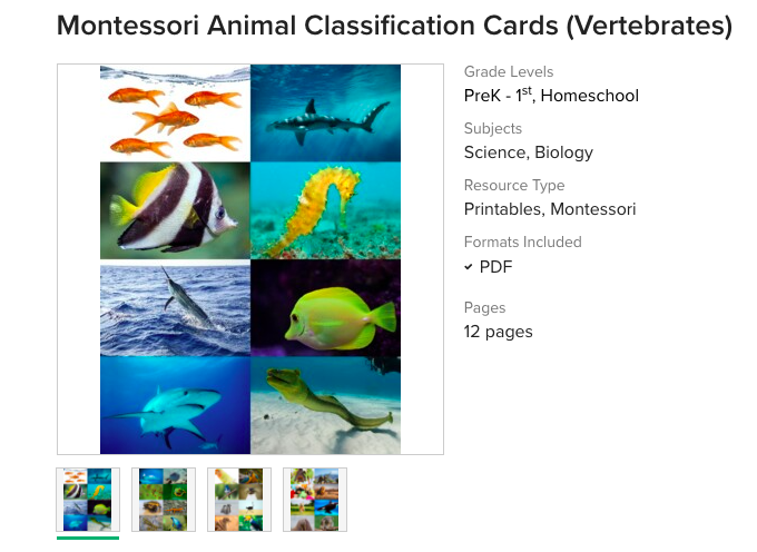 Montessori Animal Classification Cards Printable